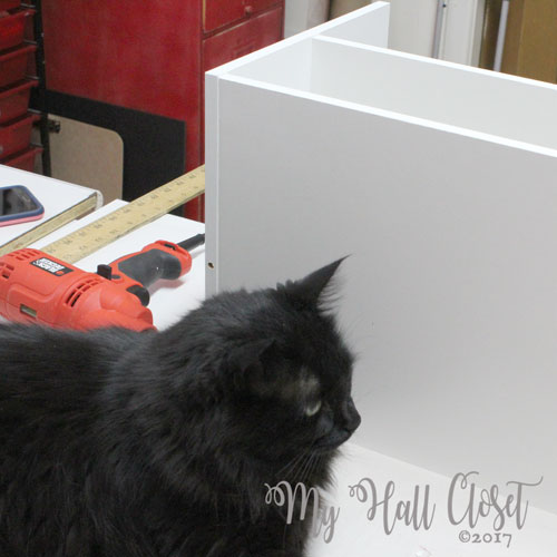 New tables for my creative space - I used Closetmaid shelves for the base. Kitty No can really get in the way.