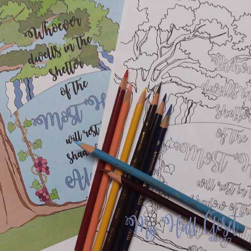 psalm 91 coloring book