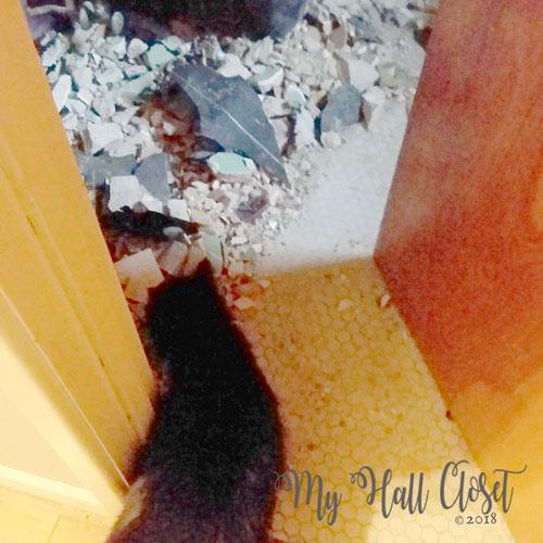 Bathroom debris and Kitty No
