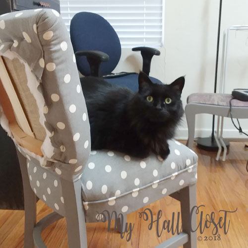 Gray chair and Kitty No