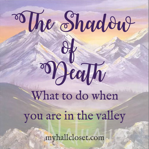 The Shadow of Death – What To Do When You Are in the Valley