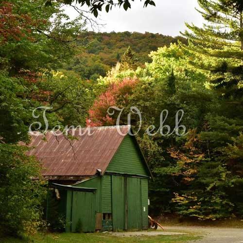 Temi's photography green barn