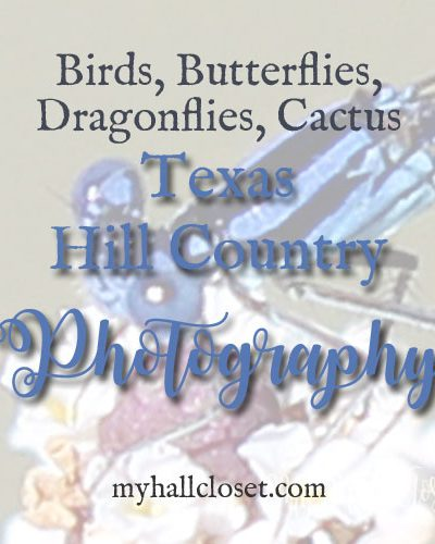 Texas Hill Country Photography